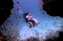Plongée en roue libre