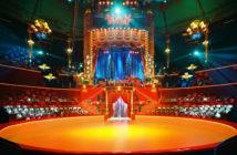 Du cirque : oui, mais du cirque chic !