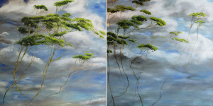 ©Claire Basler-Midetplus