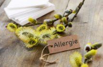 Allergies : agir pour ne plus subir