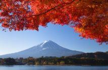 Sagesse d'automne