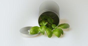 ©Pixabay-Herbes aromatiques-midetplus