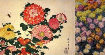©Chrysanthemums and bee - Hokusai - Bed of Chrysanthemums - Monet