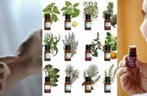 Aromathérapie : bien-être et soin