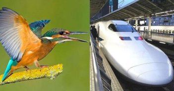 ©La nature inspire l'innovation - Mid&Plus