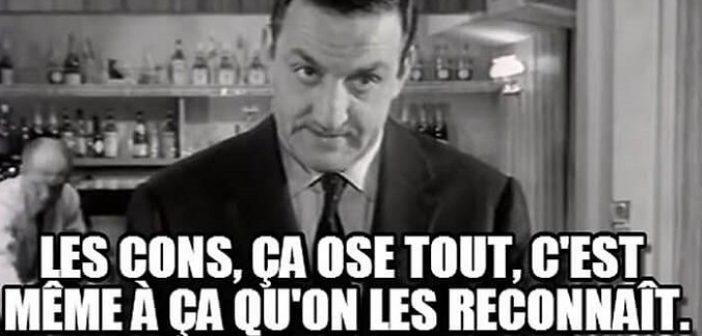 les-cons-c3a7a-ose-tout