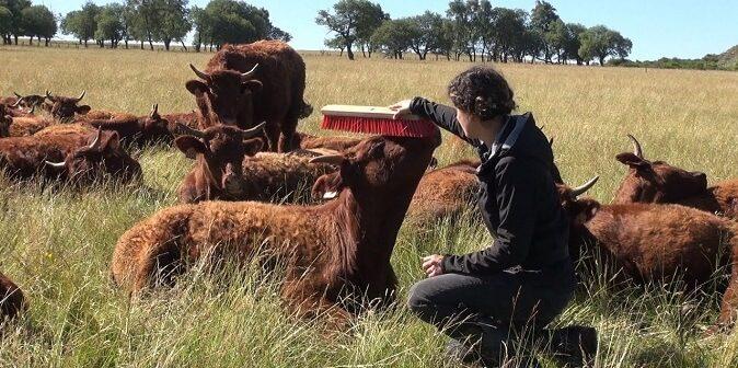 ©Bien-être animal bien-être humain - Mid&Plus