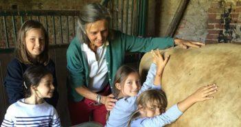 ©La Ferme Européenne des Enfants - Mid&Plus