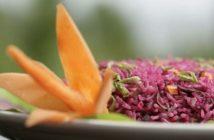Ayurveda, secrets pour une beauté naturelle