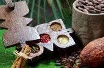 Quelle éthique pour le chocolat ?