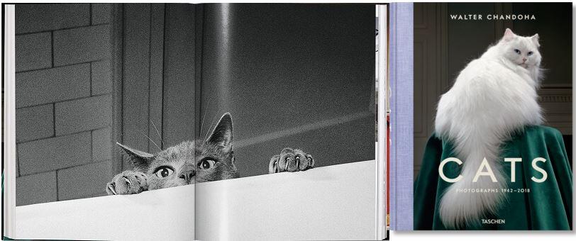 ©Taschen - Cats - Walter Chandoha - www.taschen.com - 2