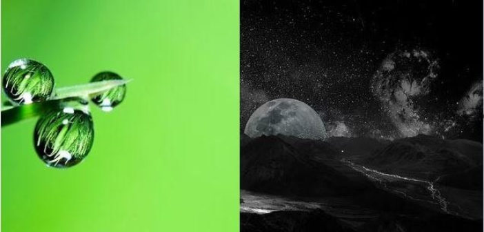 ©Black ou green - Mid&Plus