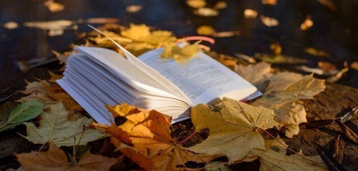 ©AdobeStock_284263912 - Nos livres de l'automne