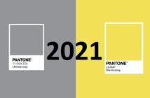 Quelle couleur pour 2021 ?