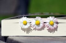 Nos lectures de printemps