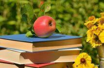 Les livres d'été de nos bibliothécaires
