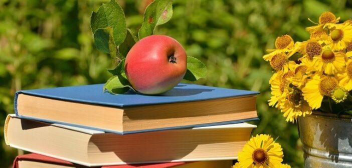 ©Pixabay apple-2037883_1280 - Nos livres pour l'été